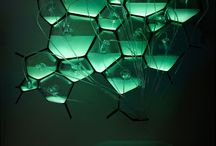 Biolight | Bioluminescence