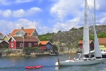Sweden / My heritage / by Annie Reynolds