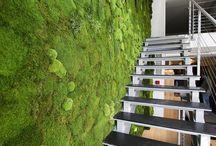 """Вертикальное озеленение / Самый уникальный вариант """"оживить"""" интерьер - вертикальное озеленение натуральными стабилизированными растениями. Не требуют полива, света, ухода и оборудования!!!"""