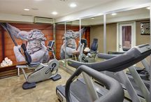 St. George Spa / A true Roman temple where equilibrium, harmony and perfect physical condition are renewed for a lifestyle where wellbeing is key / by Hotel Indigo Rome - St. George