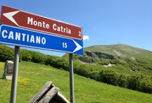 Country Bike Area / Road Bike Tour in Le Marche Land