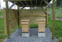 Včelareni