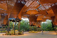 Architecture - Landscape Modern Tropic