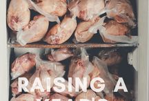 Homesteading Meat