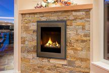 Valor Fireplaces - Portrait Ledgeview Insert / by Valor Fireplaces