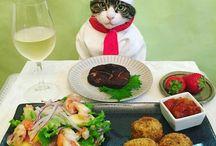 かわいい猫シェフ