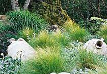 Ogród, ogródek, taras