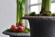 Urns - indoors and out