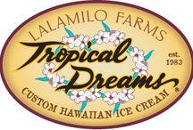 Tropical Dreams Ice Cream / Super-Premium ice cream made fresh on the Big Island!
