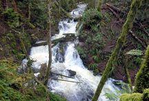 Victoria, British Columbia / A series of photos taken by David Stanley at Shawnigan Lake, Esquimalt, Langford, Sooke, Victoria, Saanich, and Sidney, British Columbia, Canada.