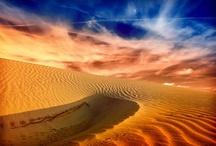 Desert Rose / by Gadling