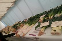 Rotherham show / Pictures from our participation at the Rotherham show 7 & 8 September