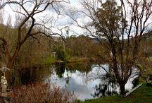 Yarra Rages Victoria Australia / Beautiful Yarra Ranges (Yarra Valley) Victoria Australia