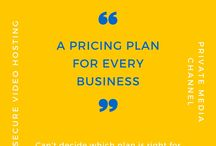 Pricing / Check out our pricing plan here: https://nichevid.com/pricing #videohosting #secure #privatemediachannel