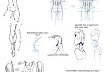 Anatómia