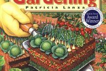 Lasagna gardening ideas