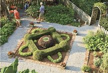 Parterres & Knot Gardens / Shearing for the serious gardener.