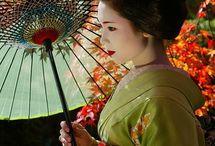 Geisha / by Kokeshette