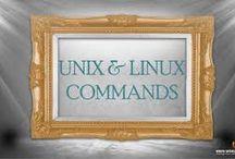 Unix / Linux Interview Questions
