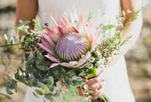 -Wedding: flowers. / by Mehgan Frazier