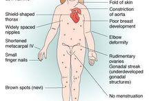 malformatii fetale