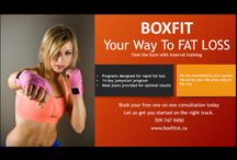 Boxfit / Boxing and Fitness