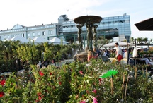 May 1st, Flower Festival in Cattolica (Italy) / May 1st, Flower Festival in Cattolica (Adriatic Coast of Italy)