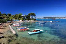 Presse et édition / Photographies d'illustration destinées à la presse ou à l'édition. Paysages des Alpes-Maritimes, photos de Nice, de la côte d'Azur et de la Provence. http://www.niceartphoto.fr/illustration.html