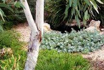 Waterwise Gardens