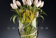 великолепные тюльпаны