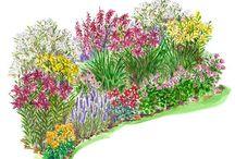 progetti giardino