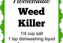 Homemade Weed Killers