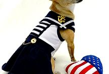 Nautical Dog Apparel & Accessories