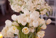 Flowers I love / by Donna Zerbian