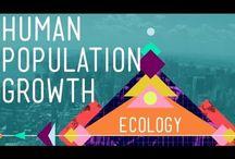 Teaching population growth