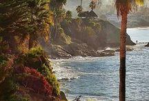Södra Califonien - Los Angeles, Laguna Beach, San Diego, Palm Springs och Catalina Island. / Platser jag varit på i Califonien 1980.