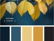 Colour palette for bathroom