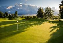 Golf in Michigan  / by Golfhub Teetimes
