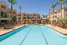 Park on Bell - Phoenix, AZ / 110 W. Bell Road Phoenix, AZ 85023 (866) 288-0919 (602) 896-3003 fax  Rent: $642 - $1,150 Bedrooms: 1 - 2 Bathrooms: 1 - 2   #MarkTaylor