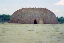 The indigenous house