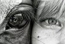 фото девушка с конем