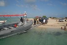 Boat & Truck