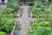 Jennie Green / Garden ideas