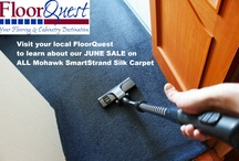 Love your Carpet / FloorQuest offers commercial and home carpeting. With a variety of different brands, we're sure to find you carpeting you will LOVE