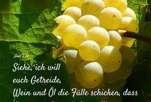 #Joel: - #AT - #Bibel - #Buch / #Joel - #AT - #Bibel - #Buch #Buch - #Joel - AT - #Bibel