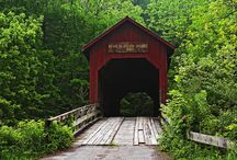 Bridges / by Ali B