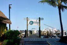 Guest Photos of BBGC / Photos of Bimini Big Game Club taken by our awesome guests.
