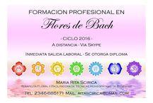 CURSOS A DISTANCIA 2016 / Cursos disponibles a partir de febrero 2016 Sin horarios on-line - Envío de material por mail Clases grabadas  + tutoría permanente