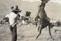 Colt / Colt Ranch and Land Co. Brand