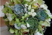 Succulent Bouquets / Stunning combinations of succulents and colorful flowers to enhance a wedding or vase in the home. / by Katie   lajollamom.com